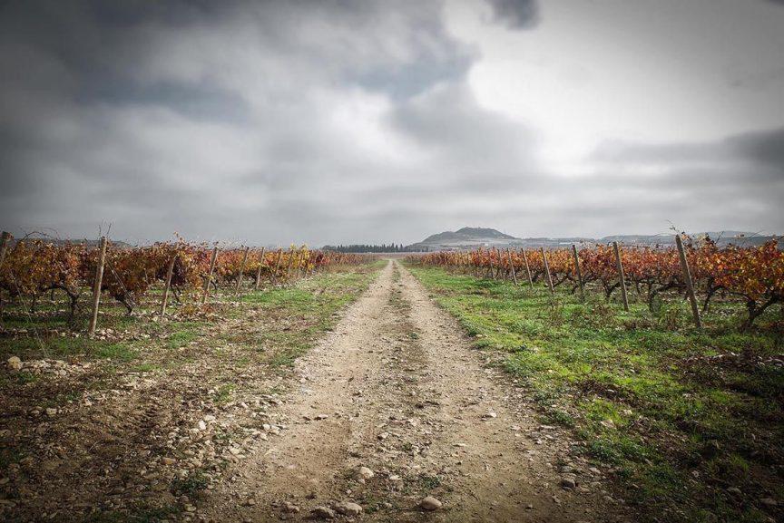 Ebro vinos La Rioja Carlos Serres