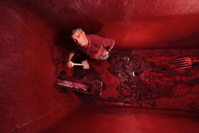 Proceso de elaboración del vino tinto: remontado