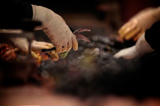 Proceso de elaboración del vino tinto: vendimia y despalillado