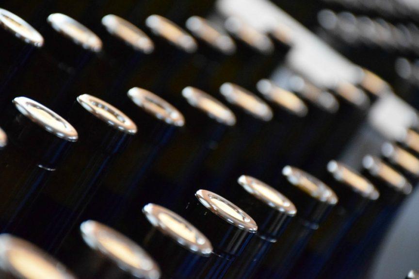 Vida de los vinos