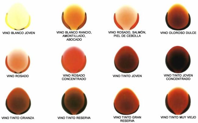 Colores del vino según su edad