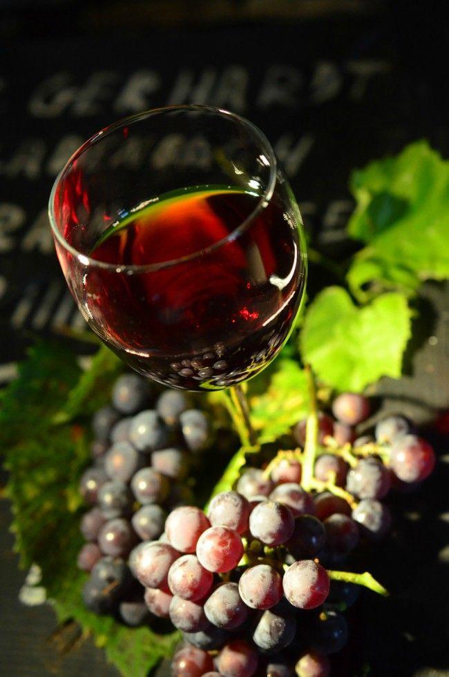 Características del vino afrutado