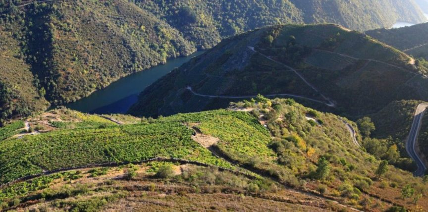 La viticultura heroica de la Ribeira Sacra