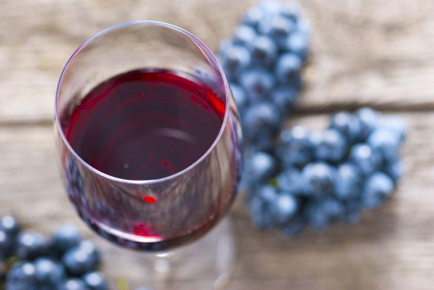 Nuestros vinos recomendados para el otoño