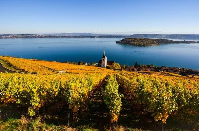 Cómo afectan las corrientes oceánicas al vino
