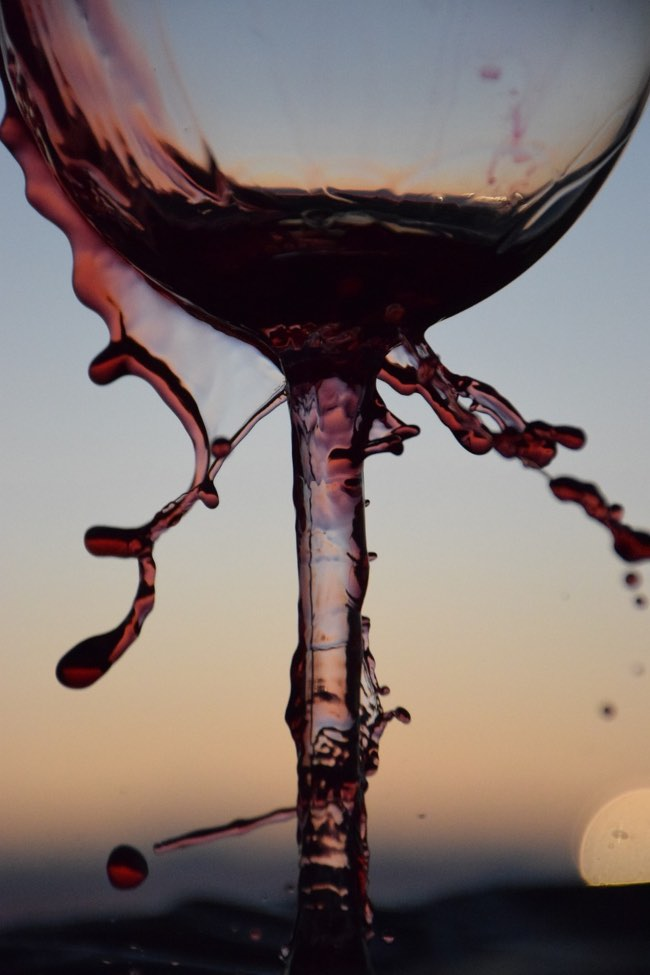El vino tinto protege las neuronas